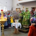 Праздник Входа Господня в Иерусалим в Кафедральном соборе г. Карасука (видео)