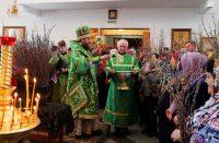 Празднование Входа Господня в Иерусалим в Кафедральном соборе г. Карасука (видео)