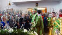 Архиерейская Литургия в г. Карасуке в день Входа Господня в Иерусалим (видео)