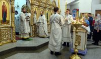 Первая архиерейская Литургия  в Кафедральном соборе г. Карасука в Новом 2020-ом году (видео)