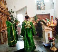 Праздник  Святой Троицы в Кафедральном соборе г. Карасука