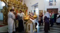 Праздник Сретения Господня в Кафедральном соборе г. Карасука (видео)
