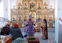 Архиерейская Литургия в селе Мироновке Баганского района в день празднования обретения мощей блаженной Матроны Московской (видео)